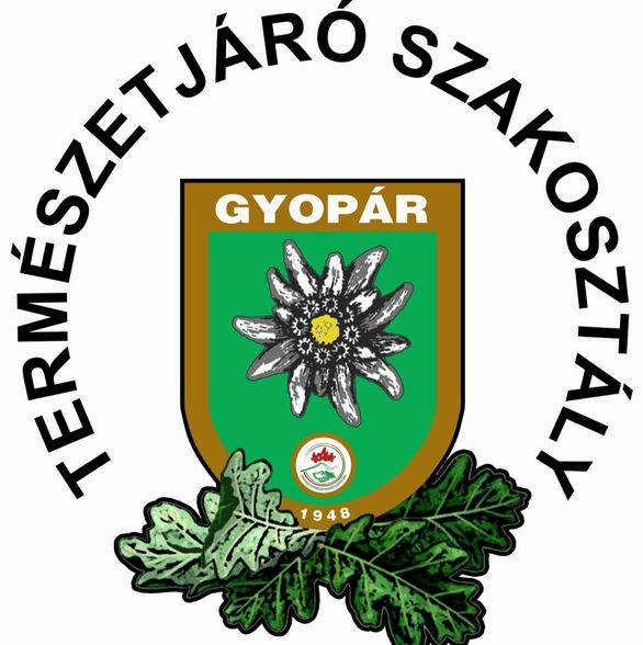 Resize of gyoparlogo-feliratos